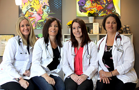Veterinarian Team at Burnhamthorpe Animal Hospital