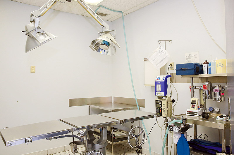 Surgical Suite